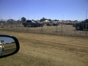 Temporary Crowd Barriers - Brisbane Queensland